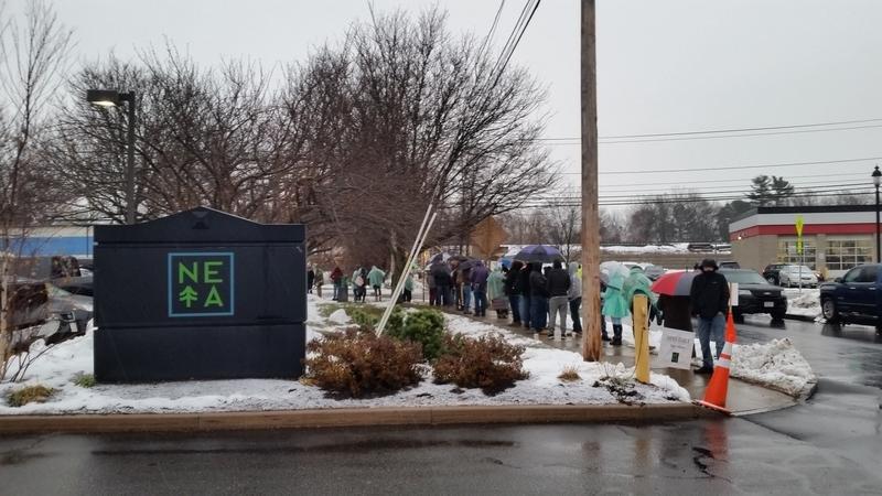 Springfield Is In No Rush To Open Marijuana Stores