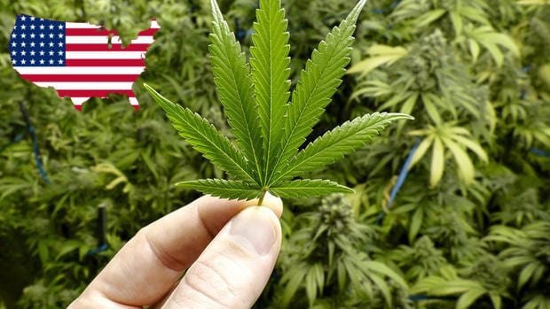 The 6 Most Likely States To Go Recreational Next