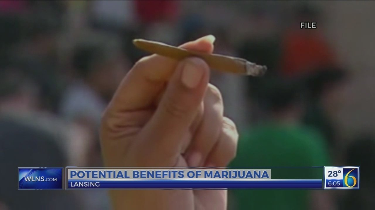 The potential benefits of legalized marijuana