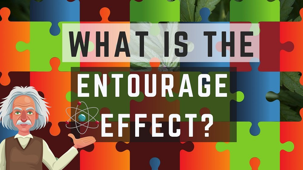 Again, most people focus on the most popular parts of the hemp plant - CBD/THC. The Entourage Effect has been hotly disputed. Have you heard of it and what do you think?