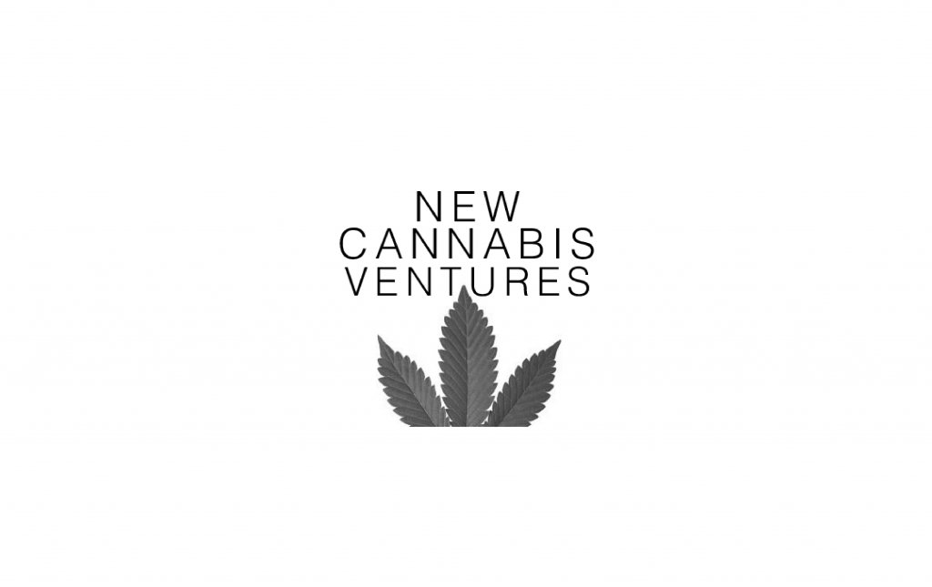 An Interview with Alan Brochstein (New Cannabis Ventures) - The Green Scene Podcast