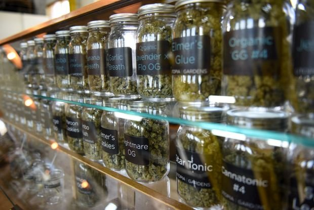 Cannabis Advocates Sue to Remove Marijuana from Controlled Substances List in Michigan