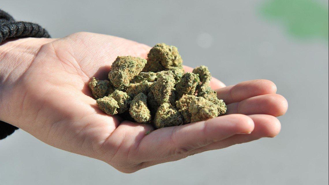 Delegate introduced bill to legalize marijuana in Virginia