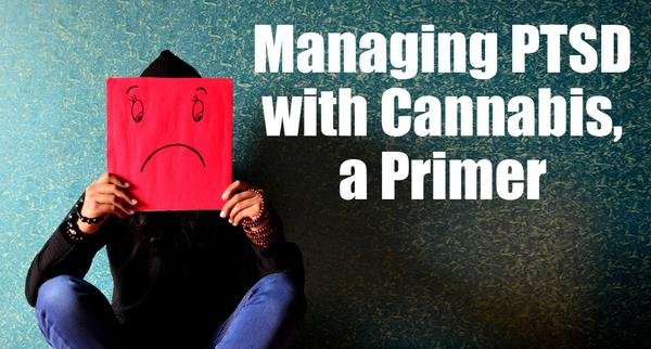 I just published an article on Managing PTSD with Cannabis!