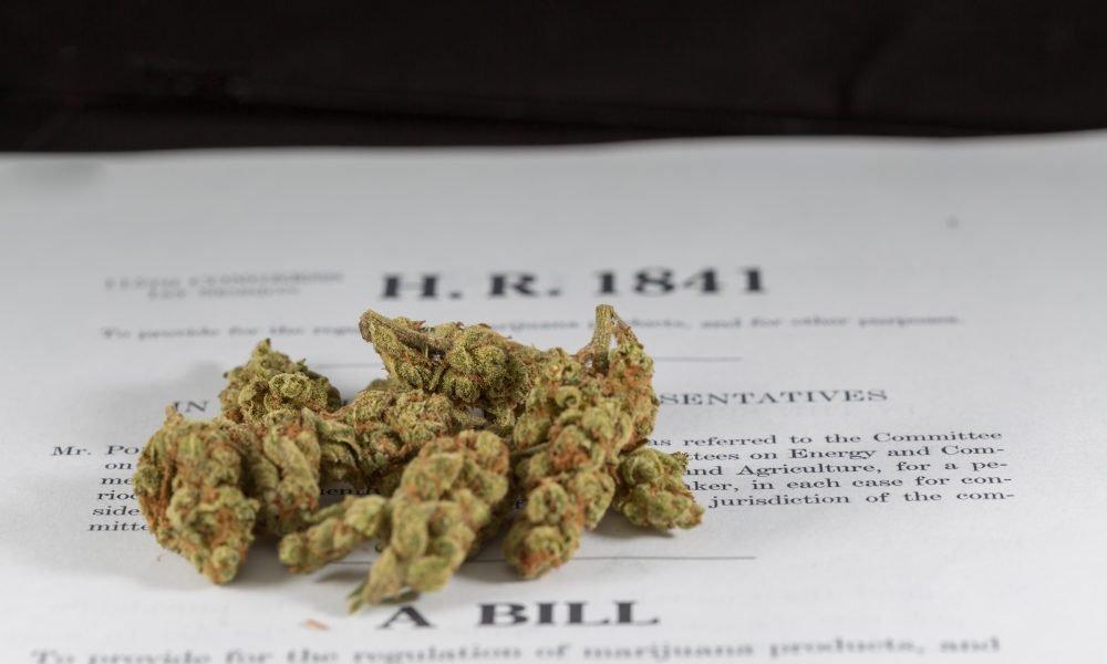 Read Congress's New H.R. 420 Marijuana Bill