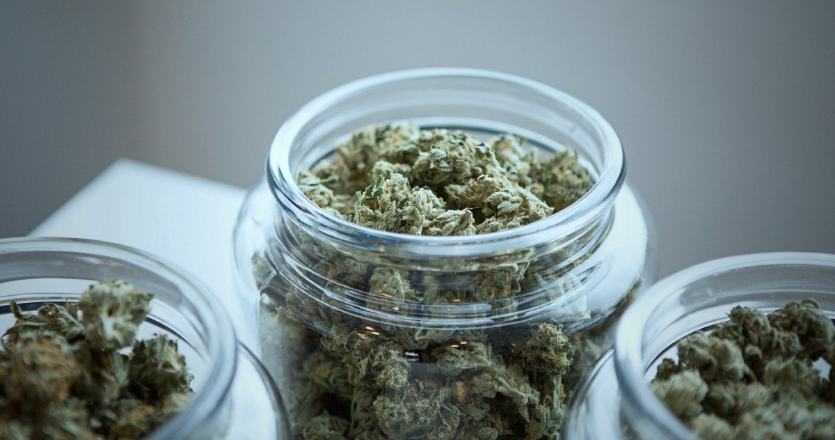 Labeling marijuana -the different effects and benefits of sativa vs. indica