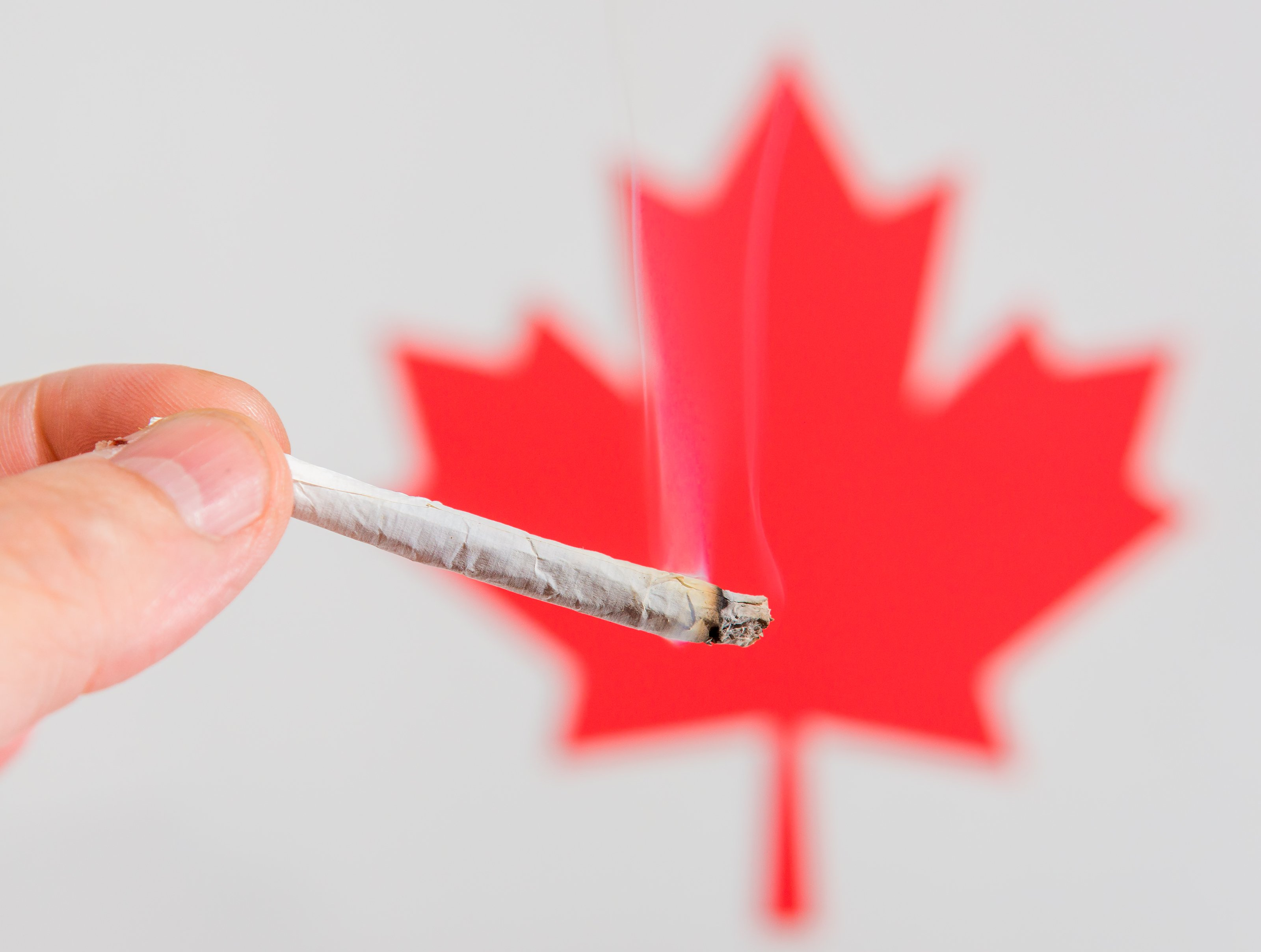 Nearly 1 in 6 Canadians Have Used Marijuana Since Recreational Pot Was Legalized