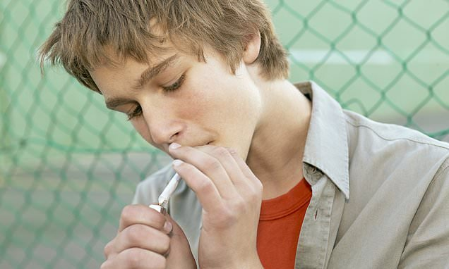 Teens smoke LESS weed in states where medical marijuana is legal, study finds