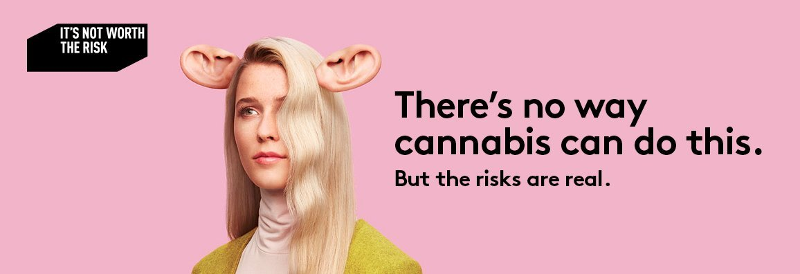 The images used in Quebec's new #cannabis awareness campaign are just bizarre | Amanda Siebert on Twitter