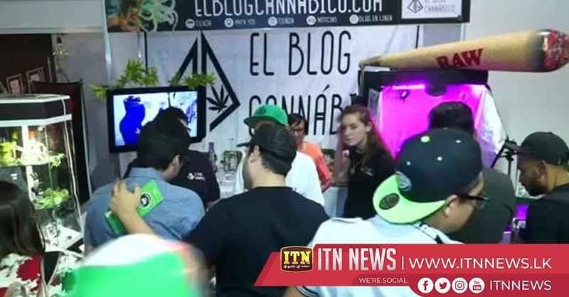 Marijuana goes mainstream at Mexico City festival