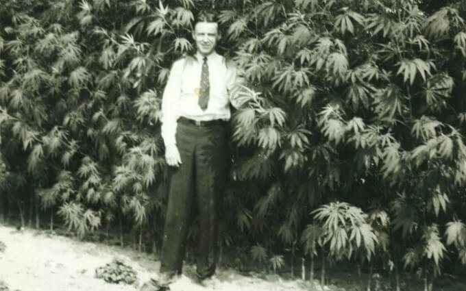 Reefer Madness, Du Pont, & the Marijuana Tax Act of 1939