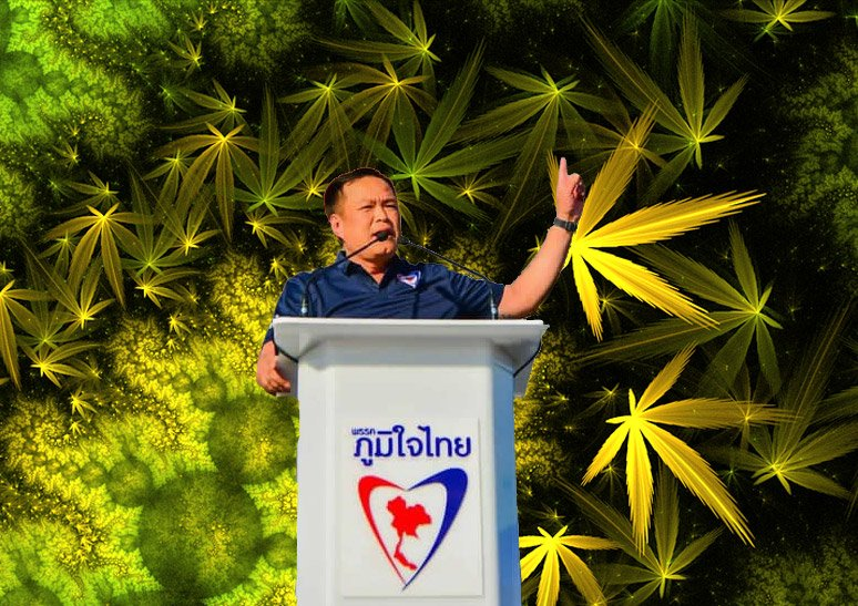 Thailand prepared to profit from the First Thai Cannabis Company