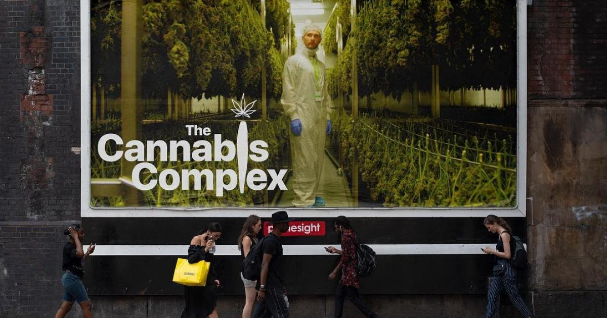 "Christian Borys documents the last days of prohibition in Canada in ""The Cannabis Complex"""