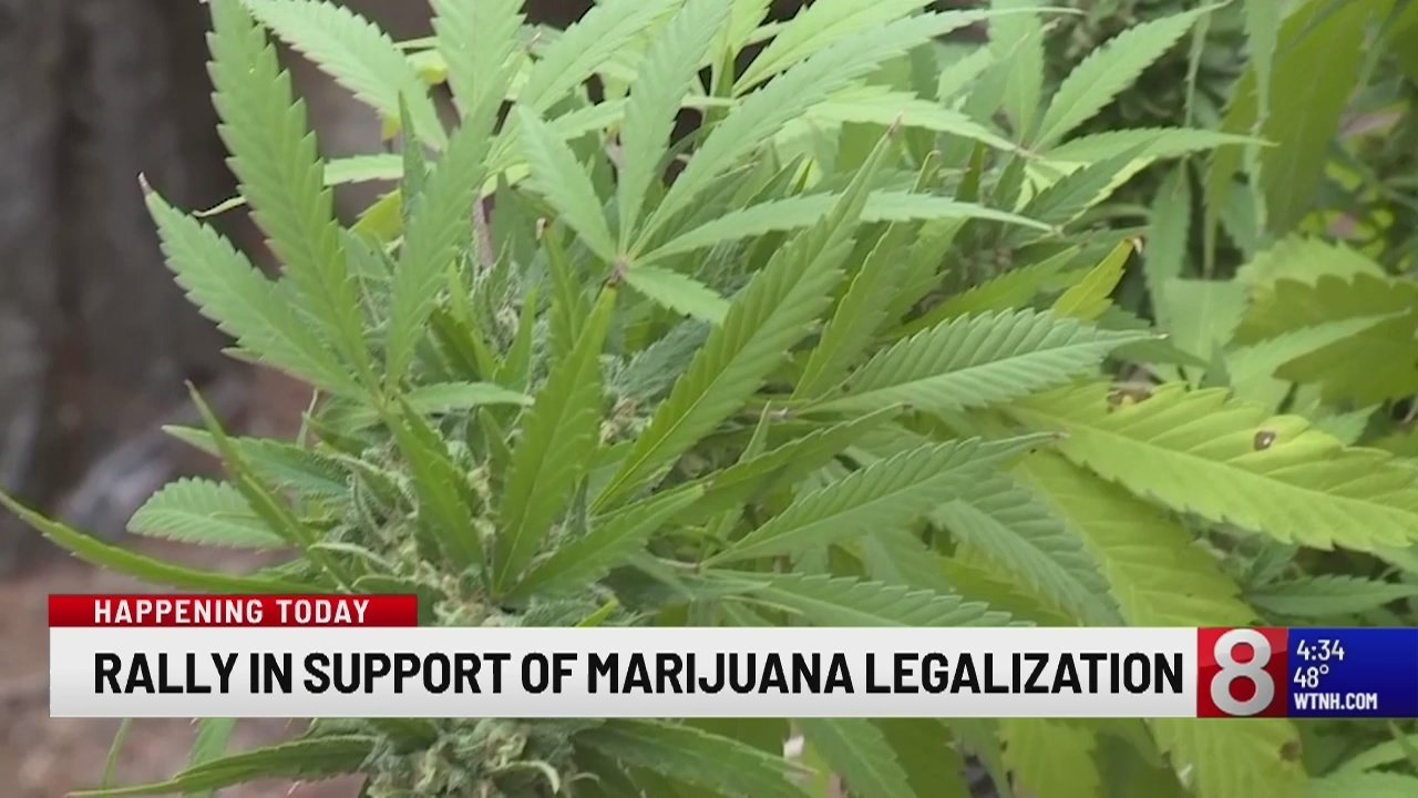 Connecticut Coalition to Regulate Marijuana Rolls Out Rally In Support Of Legalization