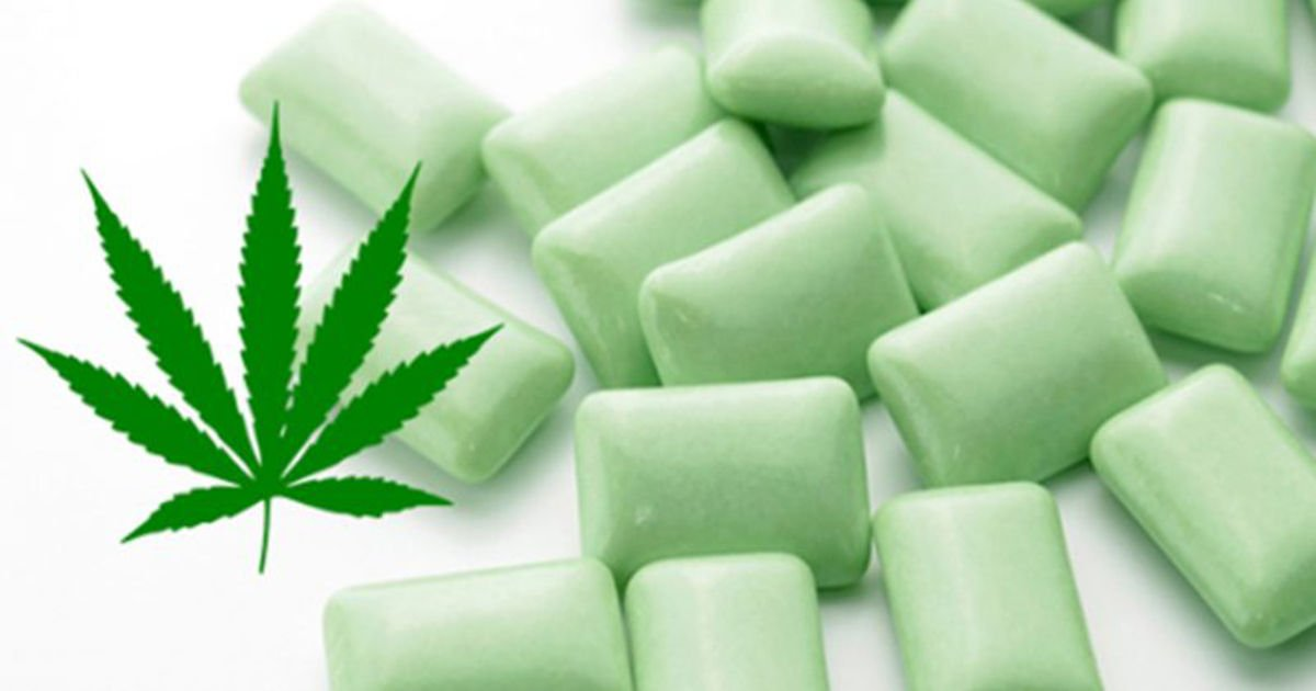 Marijuana Gum For Fibromyalgia Pain Relief: Would You Try This?