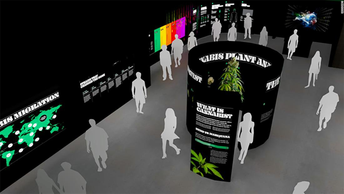 A 'Museum of Weed' is coming to Hollywood