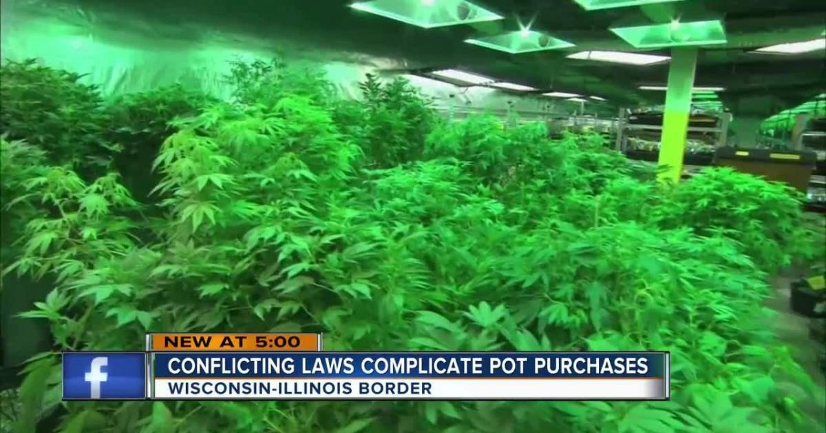Illinois legalizes recreational pot