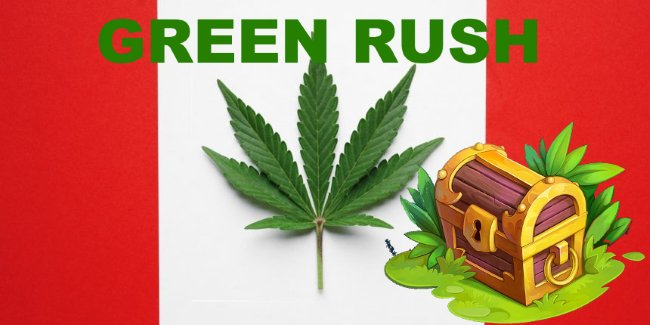 Learn about the Green Rush evolution in Canada. See how the business of cannabis is changing today.