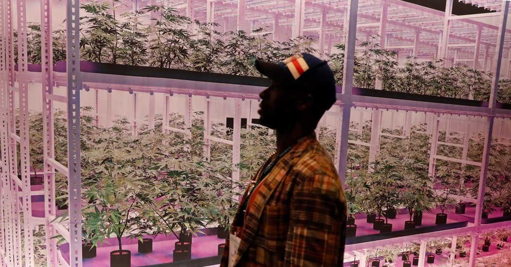 Marijuana Legalization Isn't Dead Yet in New York