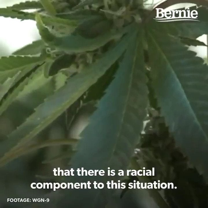"""Bernie Sanders Tweets Congratulations to Illinois for legalizing marijuana and expunging 770,000 marijuana-related cases: """"It is time to legalize marijuana nationwide."""""""