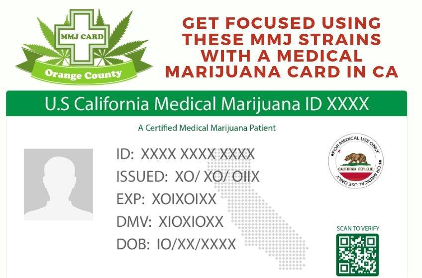 MMJ Strains for Focus using Medical Marijuana Card in CA